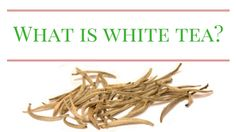 What is white tea? This is an introduction to where it comes from, how it's made, common varieties, what it tastes like, and how to brew it.