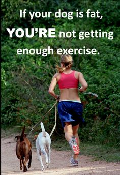 Fun Fitness Training with Your Dog #Fitness  #PersonalTrainer #Health #Personaltraining  #Dog #Exercise