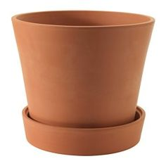 Udendørs planter og krukker - Planter - IKEA Ø39 149,-