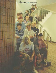 Woozi, Wonwoo, Jeonghan, Seventeen Wallpapers, Pledis 17, Reality Tv Shows, Seungkwan, Vernon, Boy Groups