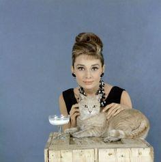 "Audrey Hepburn and ""Cat"""