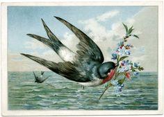 Bird with Flowering Branch