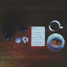 flowers, dried flowers, pressed flowers, nature, explore, adventure, coffee, little things, life, cookies, poetry :)