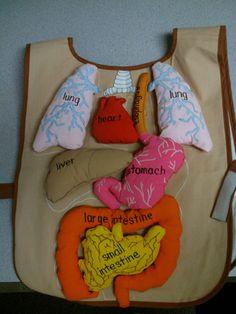 Human Body Science lesson - Album on Imgur