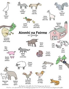 Ainmhí na Feirme (Animals of the farm) Irish Gaelic Language, Gaelic Words, Celtic Pride, Irish Celtic, Ireland Language, Scottish Gaelic, Irish People, Irish Culture, Celtic