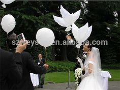 wedding decoration--Dove balloons White biodegradable balloons party favor