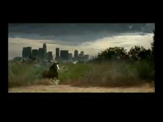 Budweiser - Clydesdale Circus Super Bowl 43 Commercial (+playlist)