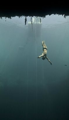 US freediver Brian Pucella appears to fly into Dean's Blue Hole.