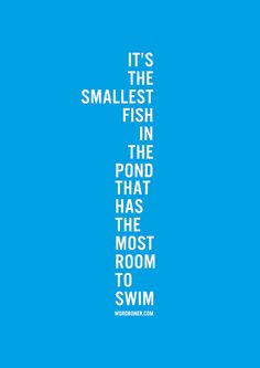 It's The Smallest Fish In The Pond by WRDBNR, via Flickr