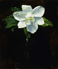 """Magnolia"", 1895, Charles Walter Stetson, oil on canvas mounted on fiberglass, 24 1/4 x 20 1/8 in. (61.5 x 51.2 cm.), Smithsonian American Art Museum Museum purchase, 1982.83.3"