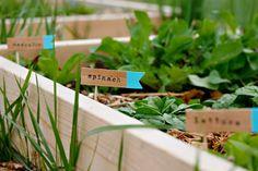 DIY wood flag garden markers -- darling!