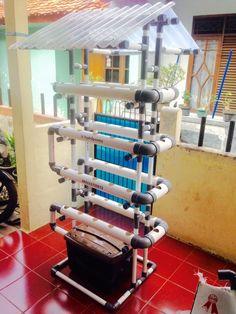 Kit Hidroponik NFT/DFT Pipa PVC 40 Lubang Fullset - 2