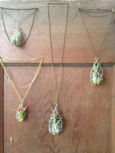 Wire-Wrapped Air Plant Necklace 17 Stunning Pieces Of Jewelry Made From Living Plants Plant Crafts, Garden Crafts, Bio Garden, Moss Garden, Succulent Planters, Hanging Planters, Succulents Garden, Cactus Plants, Art Bio