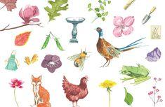 Watercolor Graphics & Textures Pack for Premium Members