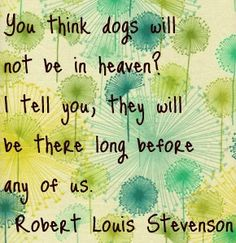 dogs in heaven...I agree!...when I was in grade school my CCD teacher told me that animals don't go to heaven...I remember going home crying to my Mom...I knew he was definitely not right!
