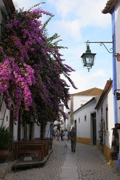 Obidos - Portugal Could be many streets in Spanish towns. Places Around The World, Oh The Places You'll Go, Travel Around The World, Places To Travel, Places To Visit, Around The Worlds, Algarve, Wonderful Places, Beautiful Places