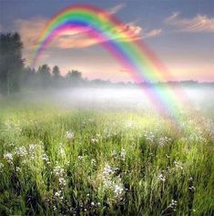 """With a rainbow this vibrant and spectacular, the silly part of me keeps waiting to see a little """"leprechaun"""" guarding a pot of gold!"""