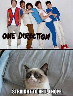 grumpy cat meme | Grumpy Cat vs One Direction. Grumpy Cat wins