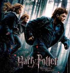 Harry Potter and the Deathly Hallows: Part I Movie Poster x 17 Inches - x Style AE -(Emma Watson)(Daniel Radcliffe)(Ralph Fiennes)(Helena Bonham Carter)(Tom Felton)(Alan Rickman) Harry Potter Poster, Photo Harry Potter, Harry Potter 7, Alan Rickman, Daniel Radcliffe, Deathly Hallows Part 1, Harry Potter Deathly Hallows, Lord Voldemort, Hogwarts