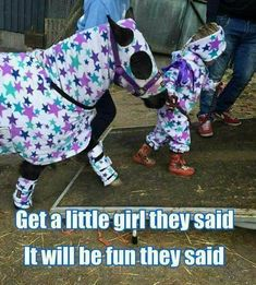 When you just want to match with your bestie! - Horses Funny - Funny Horse Meme - - When you just want to match with your bestie! The post When you just want to match with your bestie! appeared first on Gag Dad. Funny Horse Memes, Funny Horse Pictures, Funny Horses, Cute Horses, Pretty Horses, Horse Love, Horse Girl, Beautiful Horses, Horse Humor
