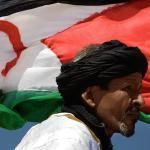 FreeSahara News, En Equipo Guiriguanche Team: Access to Western Sahara and additional news items updated twice a day ...
