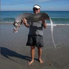 """Carolyn Hoffman was walking along the beach in Delray Beach on Jan. 5 with her husband when something odd caught her eye.    A long, ribbon-shaped fish with a large, bulging eye had washed up in the surf.    """"It just rolled up on the beach in front of us,"""" Hoffman said. """"I've never seen anything shaped like that."""""""
