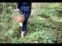 Allemansrätten.wmv - YouTube Straw Bag, Youtube, Cannon, Nature, Youtubers, Youtube Movies