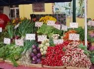 Worden Farm | Fresh - Local - Organic | Punta Gorda, Florida
