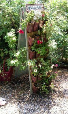 fine 35 Creative Ways to Grow Strawberry at your Garden http://godiygo.com/2017/12/21/35-creative-ways-grow-strawberry-garden/