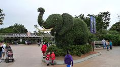 Elephant Topiary by camknows, via Flickr