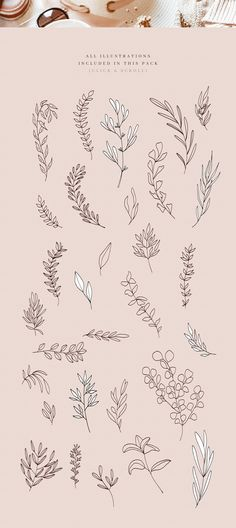 What you get: 30 branch outline illustrations 30 branch illustrations with fills EPS files AI files PNG files with transparent backgrounds Herbs Illustration, Outline Illustration, Botanical Illustration, Little Tattoos, Small Tattoos, Flower Tattoos, Simple Flower Tattoo, Dainty Tattoos, Tatto Floral