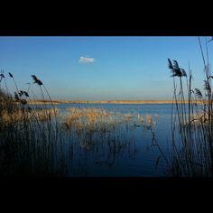 Kolon-tó - nádas, lápvilág, madárles a Kiskunság közepén #nature #photography #puszta #steppe #lake #water #sky #Alföld #Kiskunság