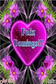 Feliz domingo para você. Bom dia com feliz domingo cheio de alegria e felicidade. Que Deus abençoe nosso domingo.