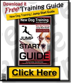 Free Dog Training Ju