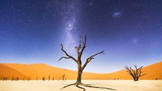 A-Night-at-Deadvlei-Photo-and-caption-by-Beth-McCarley