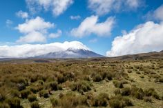 Seeing Cotopaxi is the highlight of any trip to the Avenue of the Volcanoes in Ecuador.
