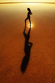 Silhouettes by Niko Guido