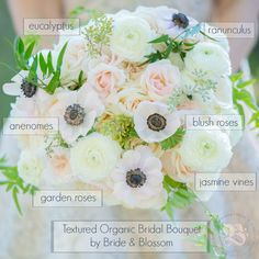 Bouquet Recipe | Bride & Blossom  A bridal bouquet composed of ivory and white garden roses, white anemones and ranunculus, blush La Perla roses, with eucalyptus and cascading jasmine vines.