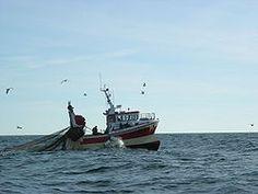 Tässä on kalastusalus joka vetää troolia. Tehnyt Vennu