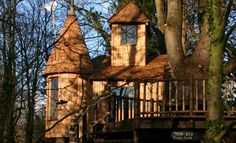 The Enchanted Forest Tree House by Blue Forest.