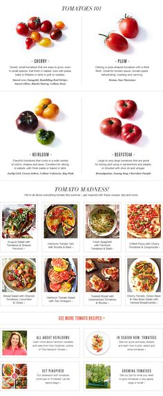 Tomatoes 101: Types of Tomatoes, How to Grow Tomatoes & Tomato Care + Links to Recipes | Williams-Sonoma