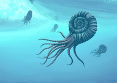 The Artists Who Paint Dinosaurs - The Atlantic. This cool ammonite is by Simon Stålenhag