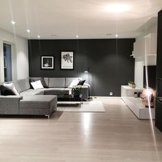 Living room 配置 壁色 床色 収納 ダウンライト