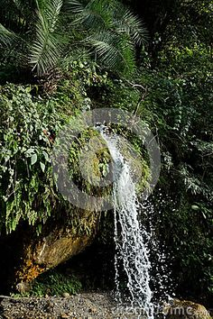Photo about A pure clean stream runs off a boulder cliff in a small waterfall in foothills of the Himalayas in North India. Image of depth, stream, brightly - 90089948 Small Waterfall, North India, Cliff, Bouldering, Stock Photos, Pure Products, Nature, Image, Naturaleza