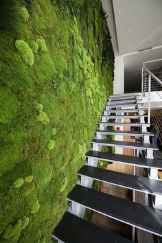 a fresh moss wall next to the staircase creates a feel of an indoor garden verde musgo externa Green Architecture, Architecture Design, Landscape Architecture, Island Moos, Green Interior Design, Interior Walls, Moss Wall, Vertical Gardens, Plant Wall