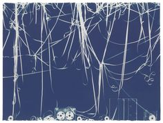 CHRISTIAN MARCLAY (B. 1955) Untitled (Thy Word) signed and dated 'Christian Marclay 2008' (on the reverse) cyanotype on acquarelle arches natural white hot press watercolor paper 22 5/8 x 30 in. (57.4 X 76.2 cm.) Executed in 2008.
