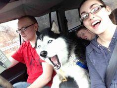 Car Selfie - Canine photo-bomber