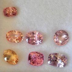 Allsapphires.com loose peach sapphires. We source new sapphires every week.  #sapphire  #peachysapphire #jewellery #padparadscha Peach Sapphire, Diamond Earrings, Diamonds, Jewellery, Instagram, Jewels, Jewelry Shop, Jewerly, Diamond