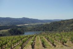 Use Wine Country Navigator to Plan Your Next Day Trip | 7x7