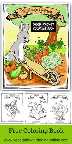Kids 39 Printable Garden Worksheets
